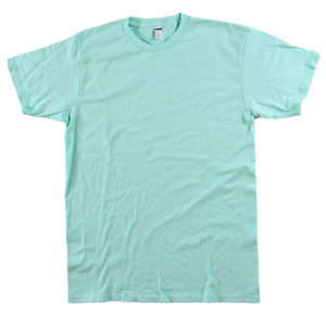 RGRiley | Bulk Mint 4.3 Ounce Tee Shirt | Closeout