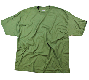 RGRiley | Hanes Big Mens Green Beefy T-Shirts | Closeout