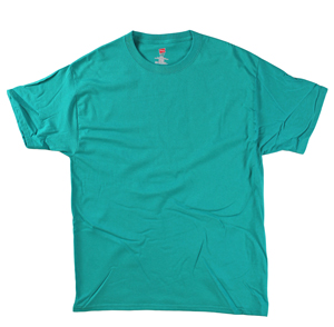 RGRiley | Hanes Mens Jade Cotton Jersey T-Shirts | Closeout