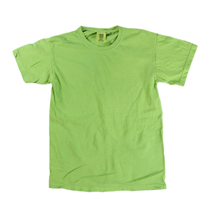 6976c2b2 RGRiley | Comfort Color Mens Aloe Short Sleeve T's | Closeout | Marginal
