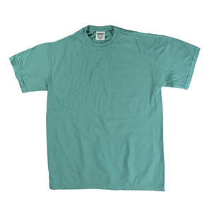 RGRiley | Comfort Color Mens Brook Short Sleeve T's | Closeout | Marginal
