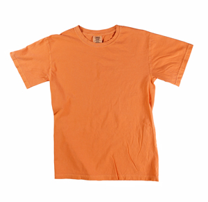 RGRiley | Comfort Color Mens Brunt Orange Short Sleeve T's | Closeout | Marginal