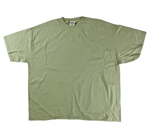 RGRiley | Comfort Color Mens Celery Short Sleeve T's | Closeout | Marginal