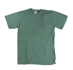 RGRiley | Comfort Color Mens Mallard Short Sleeve T's | Closeout | Marginal