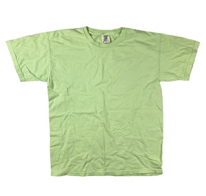RGRiley | Mens Comfort Color Celadon Short Sleeve T-Shirts | Mill Graded